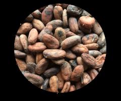 Bean to Bar チョコレート (ベネズエラ スパイク)