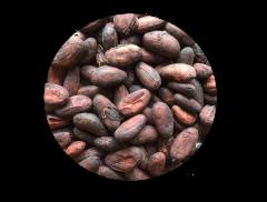 Bean to Bar チョコレート(ブラジル カカオ77%)